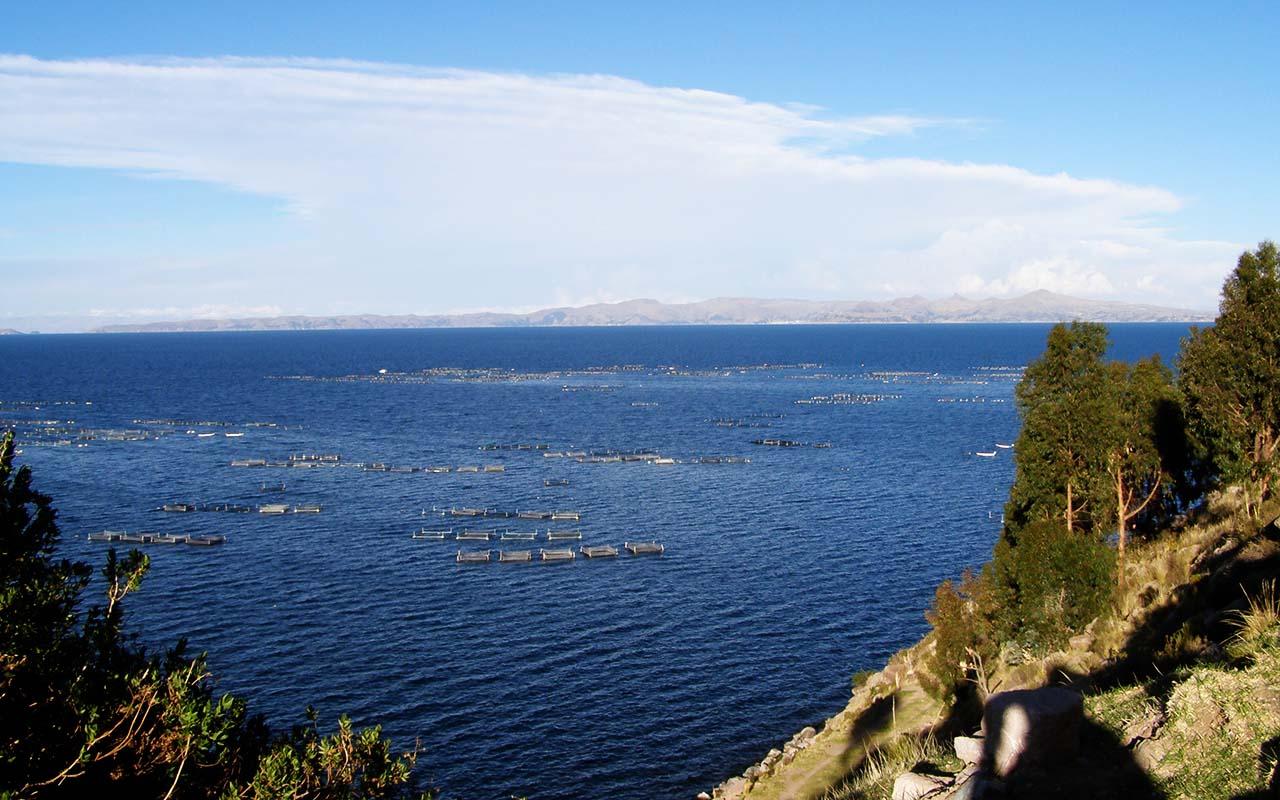 Puno - Trip Peru